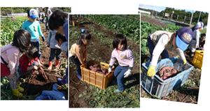 2011_10imohori2_2